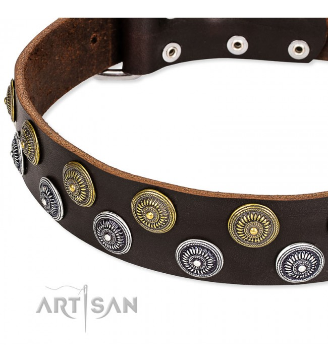 ... Brown Leather Dog Collar with Brass and Chrome-plated Decor - Exquisite  Circles Handcrafted by ...