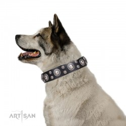 "Black Leather Dog Collar with Chrome Plated Decor - Round Delicacy"" Handcrafted by Artisan"""