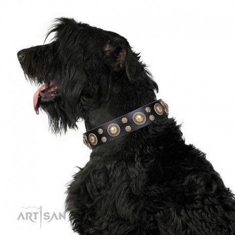 "Black Leather Dog Collar with Brass Decor - Golden Beauty"" Handcrafted by Artisan"""