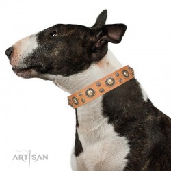 Tan Leather Dog Collar with Brass Decor - Sophisticated Circles Handcrafted by Artisan""""