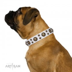 "White Leather Dog Collar with Brass Decor - Golden Purity"" Handcrafted by Artisan"""