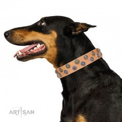 Tan Leather Dog Collar with Brass and Chrome-plated Decor - Sophisticated Circles Handcrafted by Artisan""""