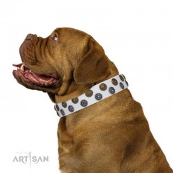 White Leather Dog Collar with Brass and Chrome-plated Decor - Pure Circles Handcrafted by Artisan""""