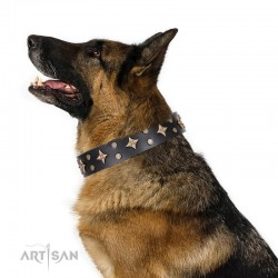 "Black Leather Dog Collar with Brass Decor - Fine Stars"" Handcrafted by Artisan"""