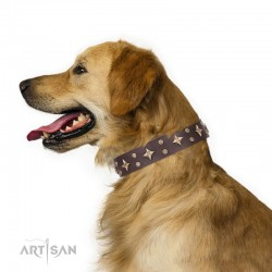 Brown Leather Dog Collar with Brass Decor - Dainty Stars Handcrafted by Artisan""""