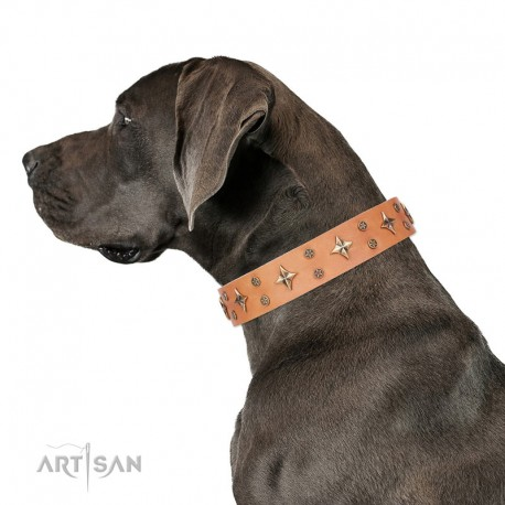 """Tan Leather Dog Collar with Brass Decor - Jaunty Stars"""" Handcrafted by Artisan"""""""
