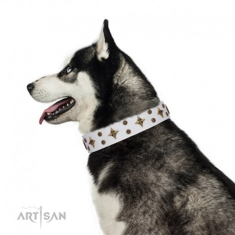 """White Leather Dog Collar with Brass Decor - Refined Stars"""" Handcrafted by Artisan"""""""