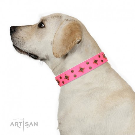 """Pink Leather Dog Collar with Brass Decor - Trendy Stars Handcrafted by Artisan"""""""""""