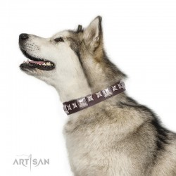 "Brown Leather Dog Collar with Chrome-plated Decor - Special Squares"" Handcrafted by Artisan"""