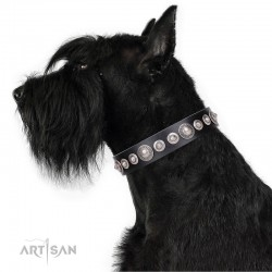 """Black Leather Dog Collar with Chrome-plated Decor - Glorious Shields"""" Handcrafted by Artisan"""""""""""