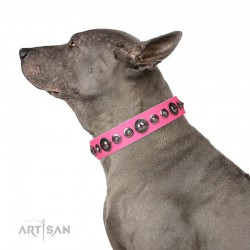 "Pink Leather Dog Collar with Chrome Plated Decor - On-Trend Shields"" Handcrafted by Artisan"""