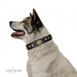 "Black Leather Dog Collar with Brass Plated Decor - Studded Charm"" Handcrafted by Artisan"""