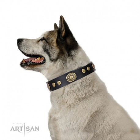 """Black Leather Dog Collar with Brass Plated Decor - Studded Charm"""" Handcrafted by Artisan"""""""