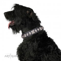 """Decorated Black Leather Dog Collar - Delicacy & Refinement"""" Handcrafted by Artisan"""""""