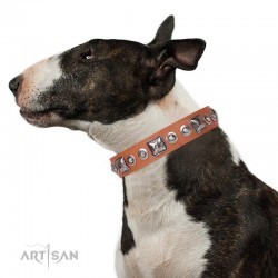 """Tan Leather Dog Collar - Delicacy & Refinement"""" Handcrafted by Artisan"""""""