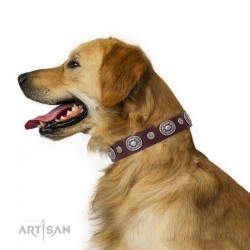 "Decorated Brown Leather Dog Collar - Ornamental Groove"" Handcrafted by Artisan"""