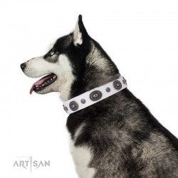 "Decorated White Leather Dog Collar - ""Ornamental Groove"" Handcrafted by Artisan"