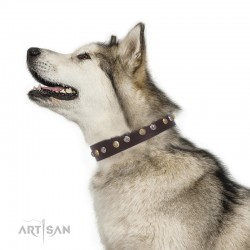 """Studded Brown Leather Dog Collar - """"Flourishing Beaute"""" Handcrafted by Artisan"""