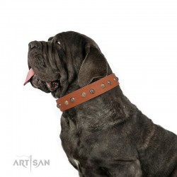 "Studded Tan Leather Dog Collar - ""Flourishing Beaute"" Handcrafted by Artisan"
