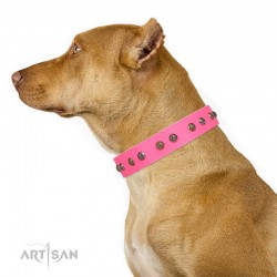 "Studded Pink Leather Dog Collar - ""Flourishing Beaute"" Handcrafted by Artisan"