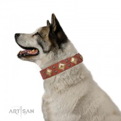 "Tan Leather Dog Collar with Brass Decor - Goldish Fineness"" Handcrafted by Artisan"""