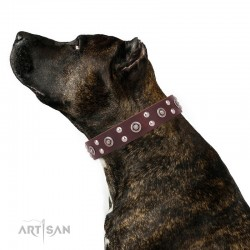 """Brown Leather Dog Collar with Chrome-plated Decor - Ultimate Gift"""" Handcrafted by Artisan"""""""