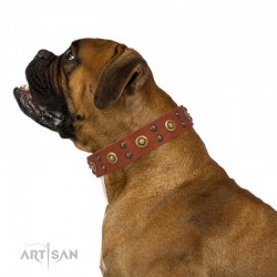 "Tan Leather Dog Collar with Brass Decor - Golden Gift"" Handcrafted by Artisan"""