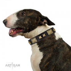 "Black Leather Dog Collar with Brass Plated Decor - Old Bronze Style"" Handcrafted by Artisan"""