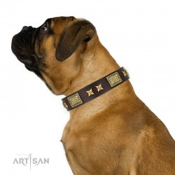 "Brown Leather Dog Collar with Brass Plated Decor - Old Bronze Style"" Handcrafted by Artisan"""
