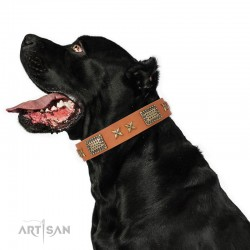 "Tan Leather Dog Collar with Brass Plated Decor - Old Bronze Style"" Handcrafted by Artisan"""