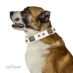 "White Leather Dog Collar with Brass Plated Decor - Old Bronze Style"" Handcrafted by Artisan"""