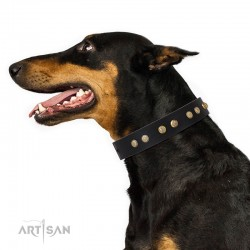 "Black Leather Dog Collar with Brass Plated Decor - Flowers & Twigs"" Handcrafted by Artisan"""""