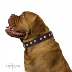 "Brown Leather Dog Collar with Brass Plated Decor - Flowers & Twigs"" Handcrafted by Artisan"""""