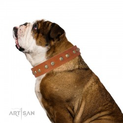 "Tan Leather Dog Collar with Brass Plated Decor - Flowers & Twigs"" Handcrafted by Artisan"""""