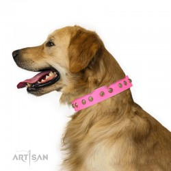 """Pink Leather Dog Collar with Brass Plated Decor - Flowers & Twigs"""" Handcrafted by Artisan"""""""""""