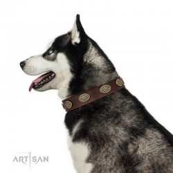 "Decorated Brown Leather Dog Collar  - Fancy Brooches"" Handcrafted by Artisan"""""