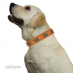 "Decorated Tan Leather Dog Collar  - Fancy Brooches"" Handcrafted by Artisan"""""