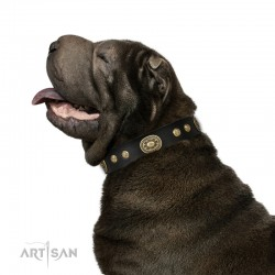 "Black Leather Dog Collar with Brass Decor - Vintage Chic"" Handcrafted by Artisan"""