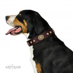 "Brown Leather Dog Collar with Brass Decor - Vintage Chic"" Handcrafted by Artisan"""