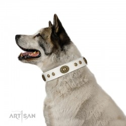 "Elegant White Leather Dog Collar with Brass Decor - Vintage Chic"" Handcrafted by Artisan"""
