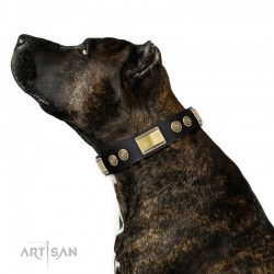 """Black Leather Dog Collar with Brass Decor - Vintage Trimness"""" Handcrafted by Artisan"""""""