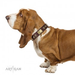"""Brown Leather Dog Collar with Brass Decor - Vintage Trimness"""" Handcrafted by Artisan"""""""