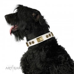"White Leather Dog Collar with Brass Decor - Vintage Trimness"" Handcrafted by Artisan"""