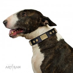 "Black Leather Dog Collar with Plates - ""Strict & Confident"" Handcrafted by Artisan"