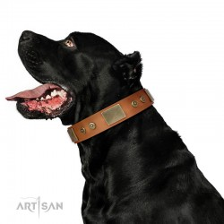 "Tan Leather Dog Collar with Plates - Strict & Confident"" Handcrafted by Artisan"""