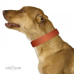 Tan Classic Design Leather Dog Collar by Artisan for Daily Walking