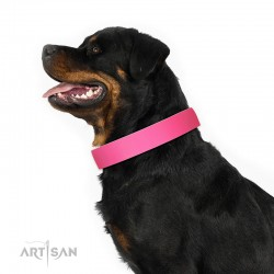 Pink Classic Design Leather Dog Collar by Artisan for Daily Walking