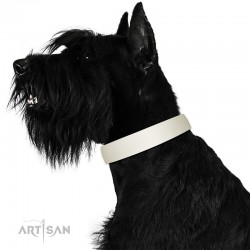 White Classic Design Leather Dog Collar by Artisan for Daily Walking
