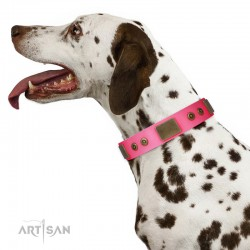 "Pink Leather Dog Collar with Plates - Strict & Confident"" Handcrafted by Artisan"""