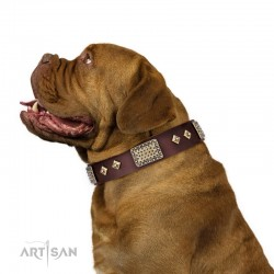 "Brown Leather Dog Collar with Plates - Vintage Style"" Handcrafted by Artisan"""